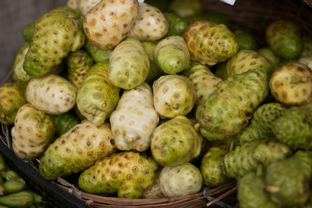 Noni fruit zum verkauf auf der messe.
