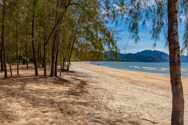 Nopparat thara beach am mittag, krabi-provinz, thailand