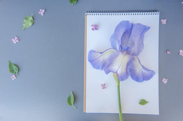 Notizblock mit irisblume, süßer frühling
