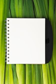 Notizbuch auf langen pflanzenblättern