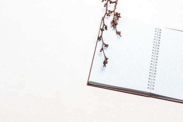 Notizbuch auf quellen und zweig mit blütenknospen oben. flach liegen. speicherplatz kopieren