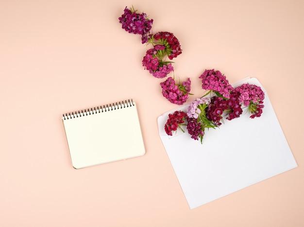 Notizbuch mit leeren blättern und türkischen gartennelke dianthus barbatus blumenknospen