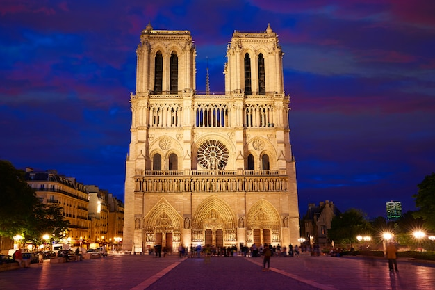 Notre dame-kathedralensonnenuntergang in paris frankreich