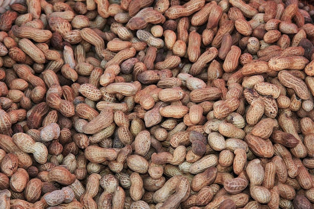 Nüsse auf dem lokalen markt in der sahara-wüste