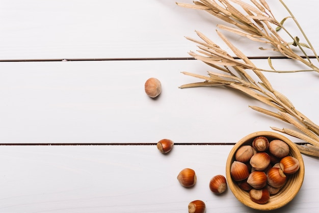 Nüsse und getrocknetes getreidegras