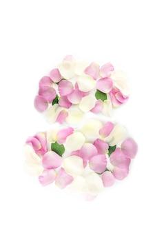 Nummer 8 aus pastellfarbenen rosenblütenblättern auf weißem grund. flach gelegte frühlingsblumenzusammensetzung.