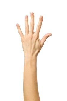 Nummer fünf. frauenhand gestikuliert lokalisiert auf weiß