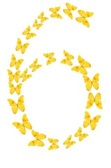 Nummer sechs aus gelben tropischen schmetterlingen isoliert auf weißem hintergrund