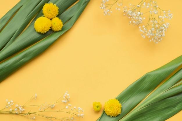 Obenliegende ansicht der chrysantheme und gemeine baby's-atemblumen mit grünen blättern auf gelbem hintergrund