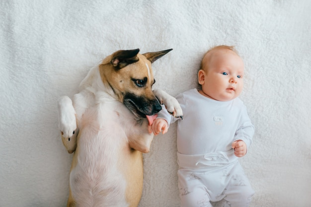 Oberes porträt des neugeborenen babys liegend mit lustigem welpen auf bett.
