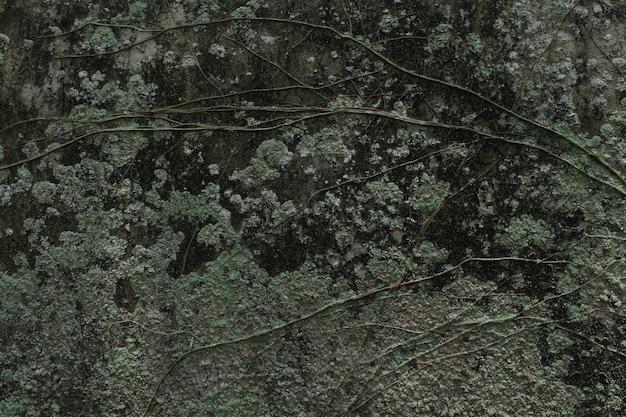 Oberfläche der wand mit altem zementputz alt