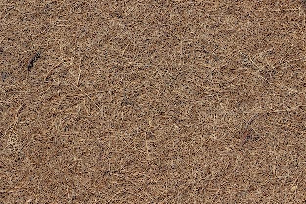 Oberfläche einer matratze aus trocken gepresster kokosfaser
