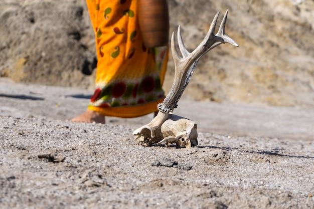 Oberfläche einer wasserlosen wüste mit tierschädel und weiblicher figur gewinnen den hintergrund