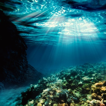 Oberflächensand am strand unter wasser