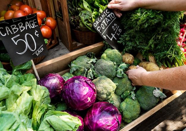 Obst-und gemüsehändler, der organisches neues landwirtschaftliches produkt am landwirtmarkt vorbereitet