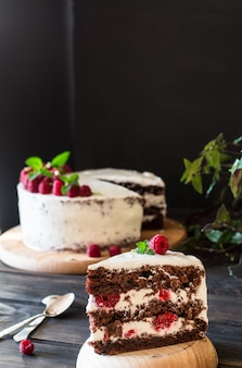 Obstkuchen himbeerkuchen mit schokolade. schokoladenkuchen. minze-dekor käsekuchen.