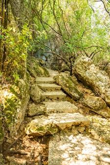 Öffentlicher park des kursunlu wasserfalls nahe antalya stadt in der türkei, schöner naturreisehintergrund, herbstzeit