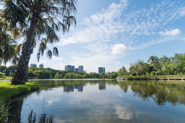 Öffentlicher park in der großen stadt. platz und outdoor-konzept. natur und landschaft in bangkok