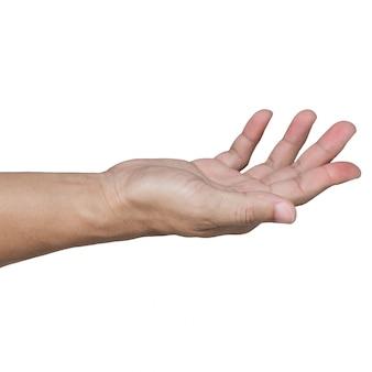 Öffnen sie die hand, die auf weiß lokalisiert wird