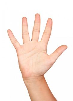 Öffnen sie die hand, die auf weißem hintergrund getrennt wird