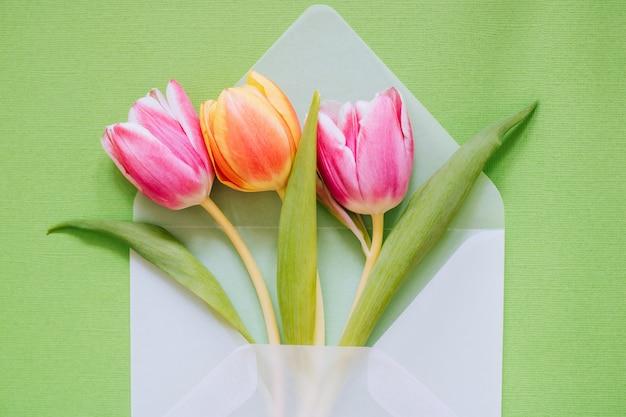 Öffnen sie transparenten mattumschlag mit mehrfarbigen tulpen auf grünem hintergrund