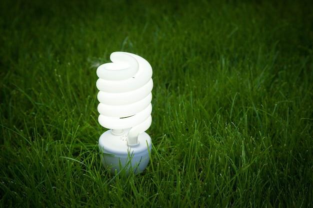 Öko-lampe leuchtet auf grashintergrund