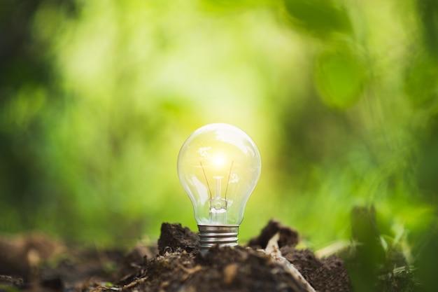 Ökologiekonzept. glühende glühbirne auf dem boden. symbol.