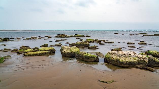 Ökologische katastrophe. trocknen des flachen kaspischen meeres