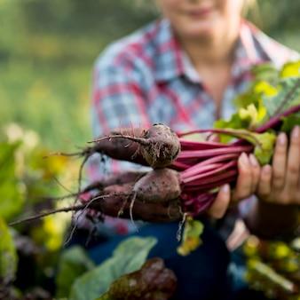 Ökologischer landbau mit gemüse