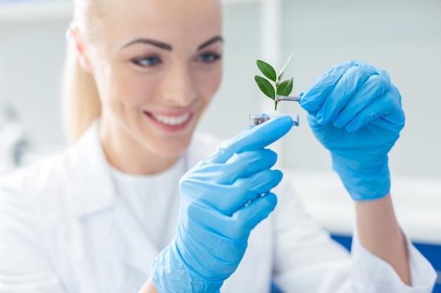 Ökologischer schutz. selektiver fokus einer grünen pflanze, die von einer netten wissenschaftlerin während der arbeit an einem öko-projekt in sol gebracht wird