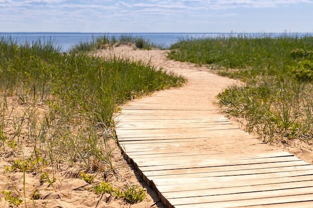 Ökologischer wanderweg im nationalpark durch sanddünen, strand, seggendickicht