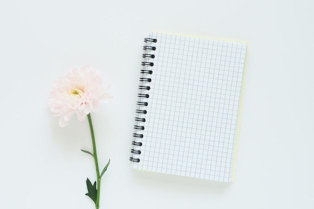 Offenes notizbuch auf einer feder und sanft rosa chrysantheme