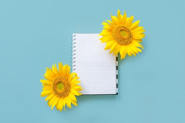 Offenes weißes notizbuch und sonnenblume der schule auf blauem hintergrund