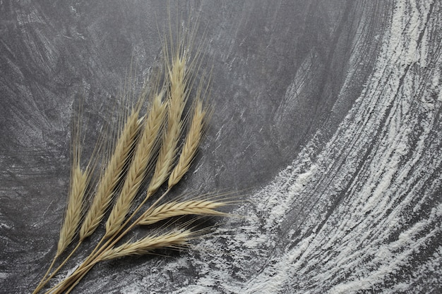 Ohren von weizen und mehl auf einem grauen hintergrund. draufsicht, getreide.