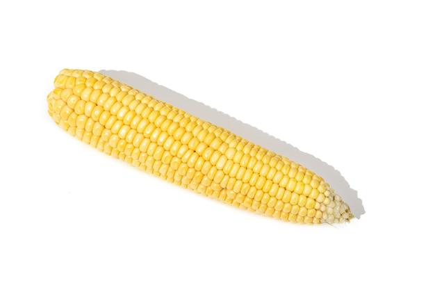Ohrmais lokalisiert auf weißem hintergrund. roher mais
