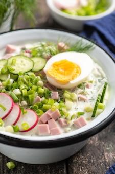 Okroshka. ein traditionelles gericht der russischen küche. sommer leichte kalte suppe mit gurke, radieschen, eiern und dill. rustikaler stil. nahansicht.