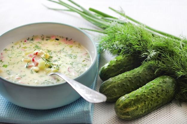 Okroshka - traditionelle russische kalte suppe
