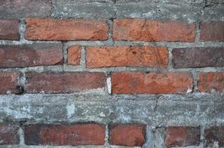 Old brick wall, rot