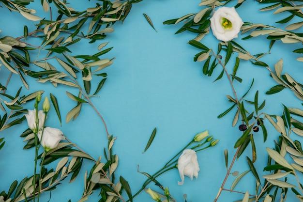 Olivenzweige mit rosen auf blauem hintergrund. ansicht von oben