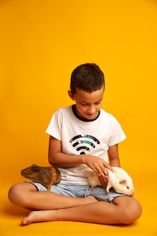 Optimistischer junge, der kamera beim tragen der entzückenden meerschweinchen gegen gelben hintergrund lächelt und nicht betrachtet