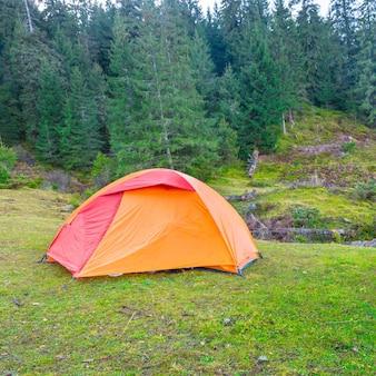 Orange campingzelt in einem grünen wald