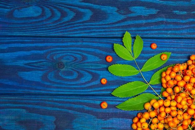 Orange ebereschenbeeren und grüne blätter auf blauen brettern mit platz für eine inschrift