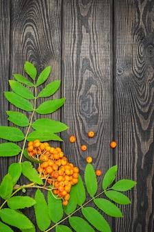 Orange ebereschenbeeren und grüne blätter auf schwarzen brettern