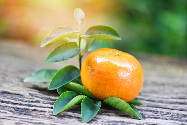 Orange frucht und blatt auf hölzernem