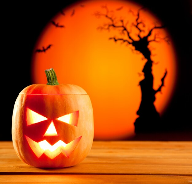 Orange kürbis halloweens auf herbstlaub