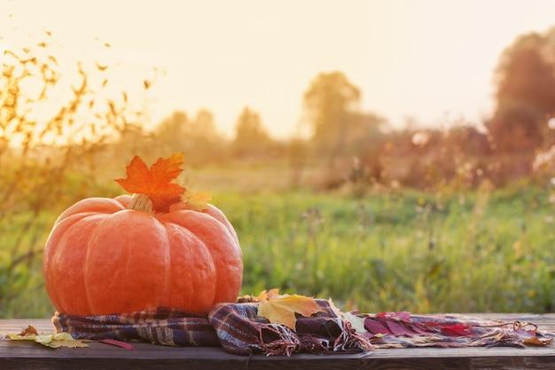 Orange kürbis mit herbstlaub auf holztisch bei sonnenuntergang