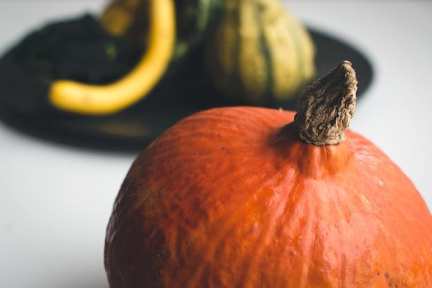 Orange kürbisdetail des herbstes