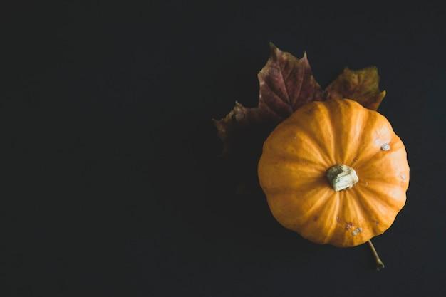 Orange littlep kürbise auf dunklem holz