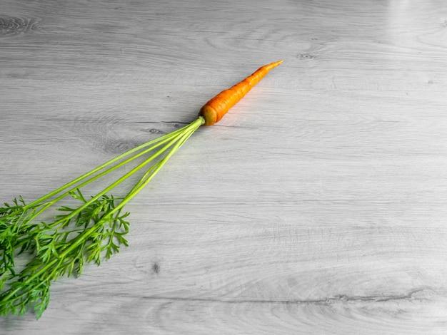 Orange natürliche karotte mit einem flauschigen langen schwanz. auf hellem hintergrund.