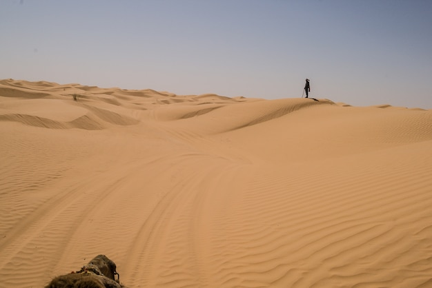 Orange sanddünen in der sahara-wüste
